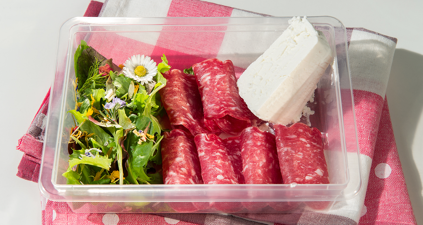 LIGHT LUNCH WITH LIGHT SALAMI, LIGHT RICOTTA CHEESE AND SALAD